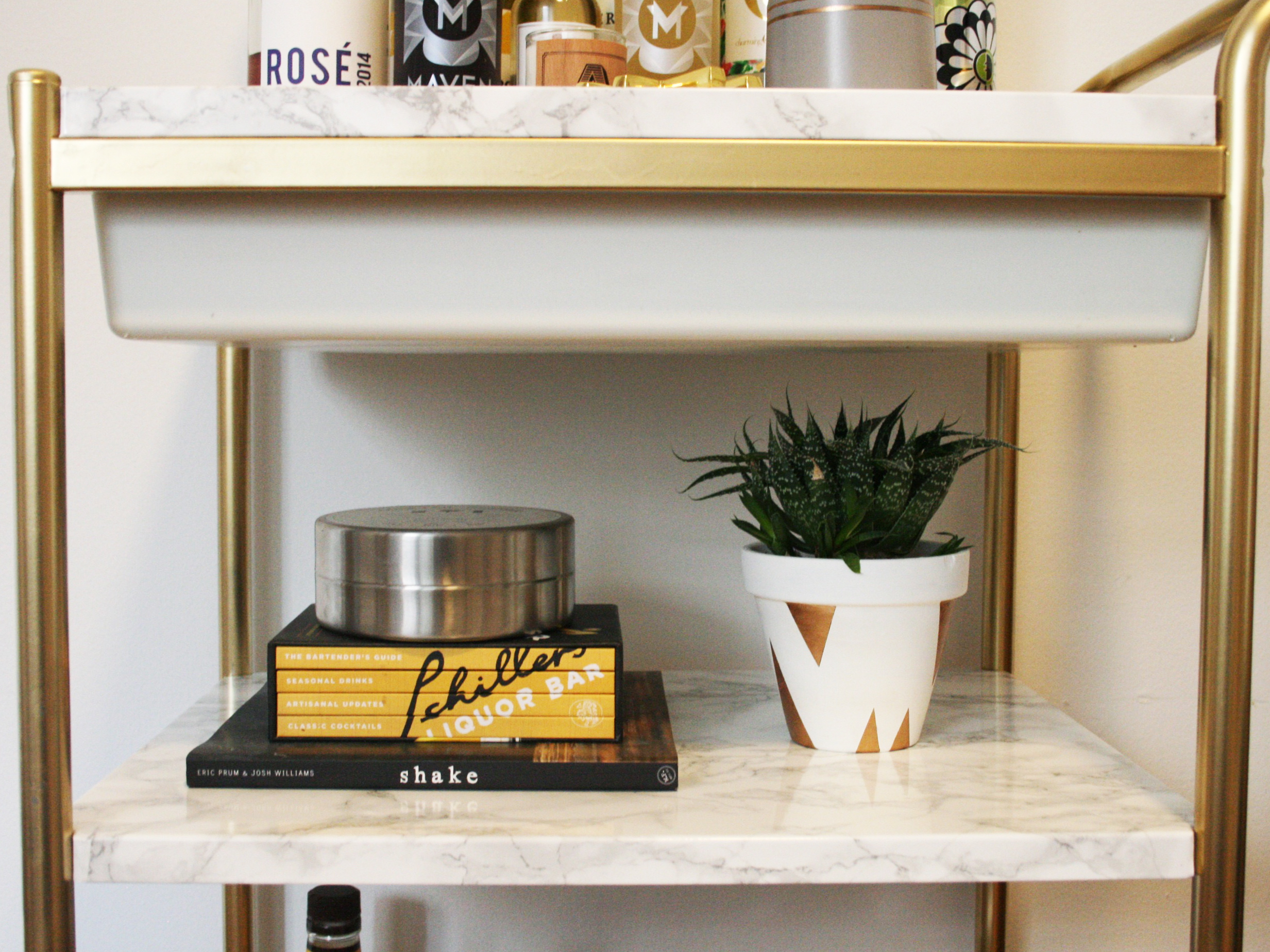 Diy Bar Cart Succulent